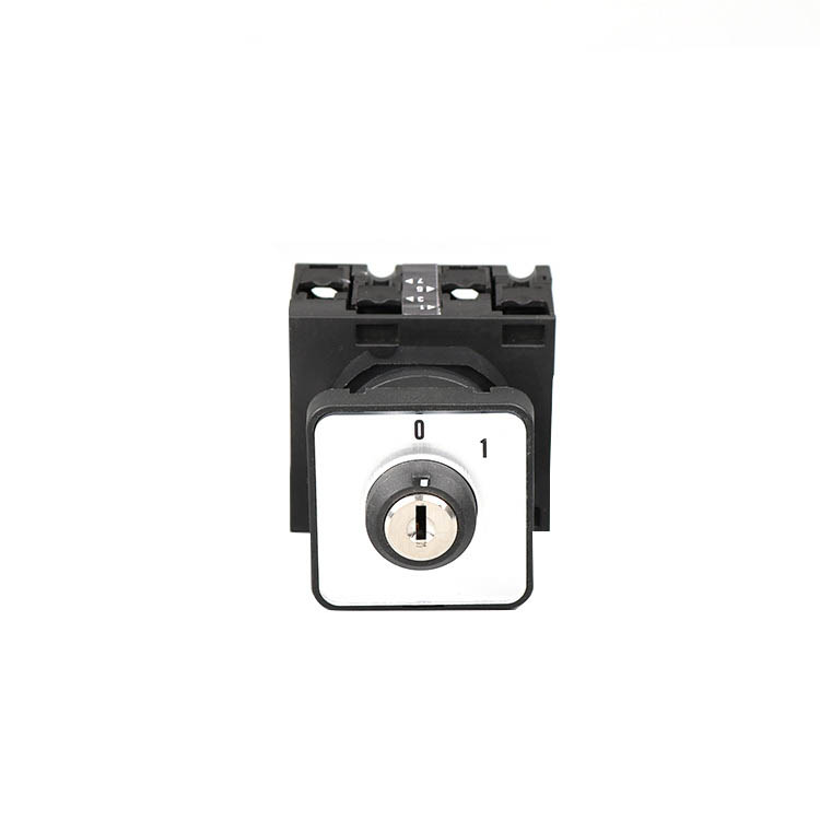 Xindali rotary cam switch suppliers for circuit control switches-1
