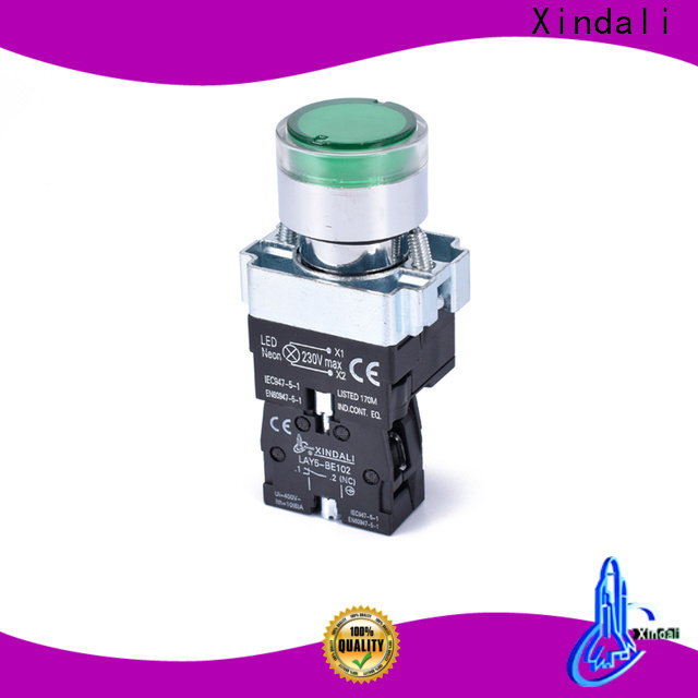 Custom pushbutton switches for electronic equipment